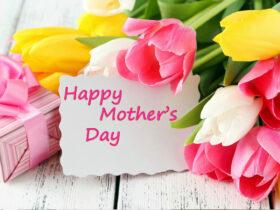 Ziua Mamei, florile care pot fi incluse în buchetul special realizat. Florile sunt printre cele mai bune cadouri pe care le poți oferi mamei. Ziua Mamei înseamnă flori alese pentru un moment special Dacă sunteți un fan al florilor ați ajuns în locul potrivit. La această florărie online avem pregătite pentru dvs. flori pentru ocazii sau buchete și coșuri cu flori. Accesați secțiunea de magazin online pentru și mai multe produse! Adăugarea unui buchet ca accent cadoului dvs. face, de asemenea, o prezentare frumoasă și colorată. Există multe flori care au o semnificație specială atunci când vine vorba despre legătura dintre mamă și copil. Având informațiile necesare, puteți face buchetul de Ziua Mamei și mai semnificativ. Atunci când includeți flori care îi vor arăta mamei cât de mult o iubiți nimic altceva nu mai contează. 1. Flori parfumate Florile parfumate, cum ar fi florile de măr, sunt ideale pentru a le adăuga buchetului de Ziua Mamei. Sunt un semn de noroc și speranță. Oferirea acestor flori mamei dvs. arată că îi doriți momente grozave în viitor. Puteți continua să sărbătoriți cu ea și mai multe Zile ale Mamei. Includeți azalee în buchet deoarece aceste flori înseamnă o atenție specială față de o anumită persoană. Florile sunt o amintire clară că țineți la mama dvs. și că vă doriți tot binele din lume pentru ea. 2. Flori exotice pentru Ziua Mamei Florile colorate și exotice, cum ar fi Păsărea paradisului, sunt un plus perfect pentru buchetul de Ziua Mamei. Aceste flori reprezintă bucurie, deci sunt o modalitate minunată de a sărbători natura bucuroasă a mamei. În acest mod o puteți anunța despre bucuria pe care o simțiți datorită dragostei și grijii pe care a acordat-o. Culorile strălucitoare ale Păsării paradisului pot fi combinate frumos cu zambilele albastre sau campanulele. Aceste flori ale recunoștinței nu trebuie să vă lipsească din buchet. Ziua Mamei este unul dintre cele mai bune momente pentru a-i mulțumi mamei. Îi puteți mulțumi pentru sacrificii, sf